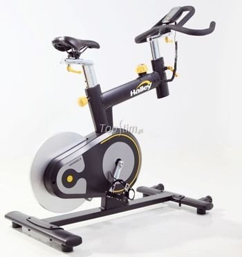 Rower Halley Fitness Hirondelle